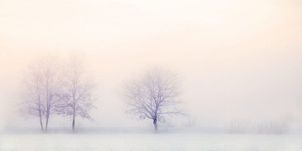 aurore d hiver